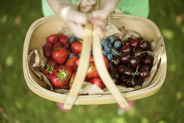 fructe cu antioxidanti