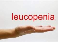 Număr scăzut de celule albe din sânge (leucopenie) – Simptome și cauze